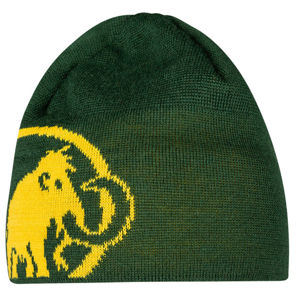 Čiapka Mammut Tweak Beanie (1191-01352) woods / freesia